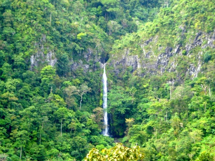Don Salvador Benedicto Waterfalls